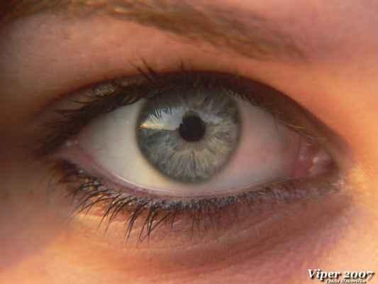 """A ted malí kvíz. Otázkou dnešního dnes je: """"Čí je to oko?""""  (pravidla soutěže najdete pod obrázkem dole) - Své správné odpovědi posílejte na mail viper51@seznam.cz nebo piště do """"Návštěvní knyhy"""" umístěné na úvodní stránce viper.rajce.idnes.cz .<br>Jména výtězů někdy vylosuju. :-) <br>PS: Soutěže se nesmí účastnit osoba focená a další čtyři osoby focení přihlížející. Ale své typy mi plidně na tem mail hodtě. :-D"""