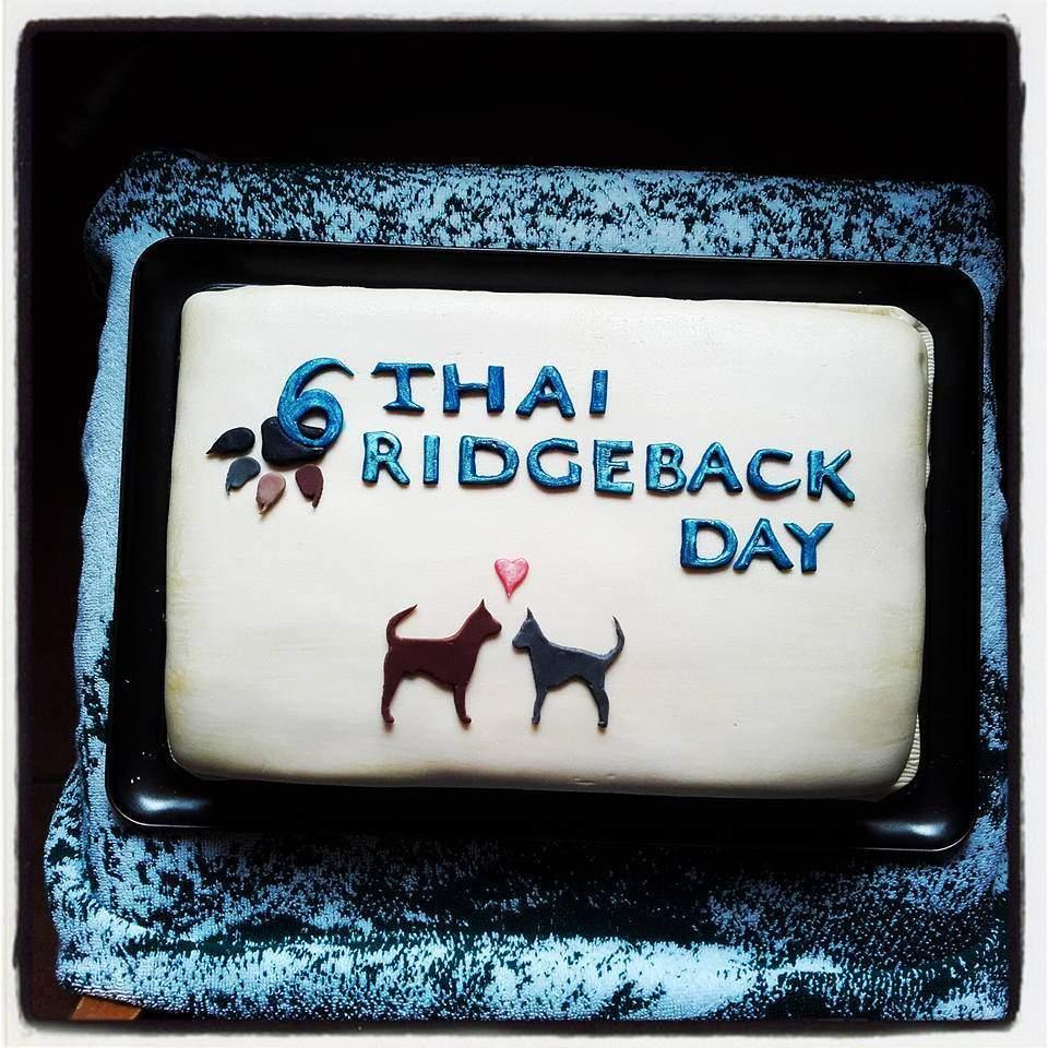 6.THAI ridgeback DAY